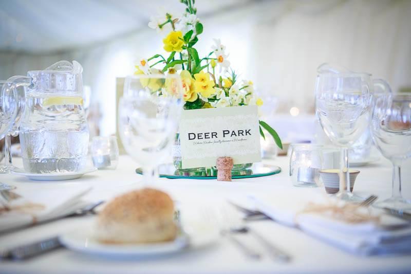 Deer Park Wedding 136