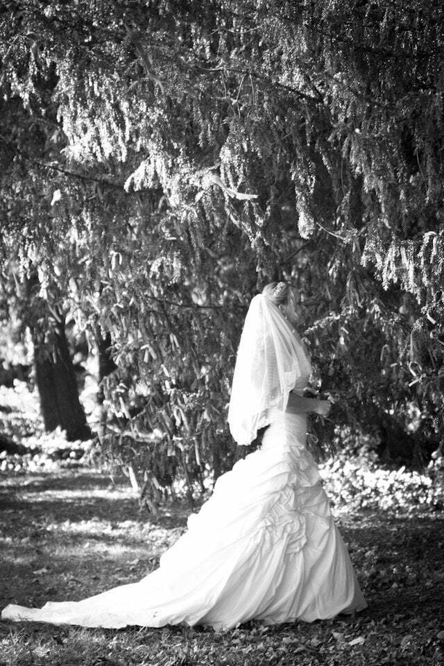 Matara Wedding LP 113