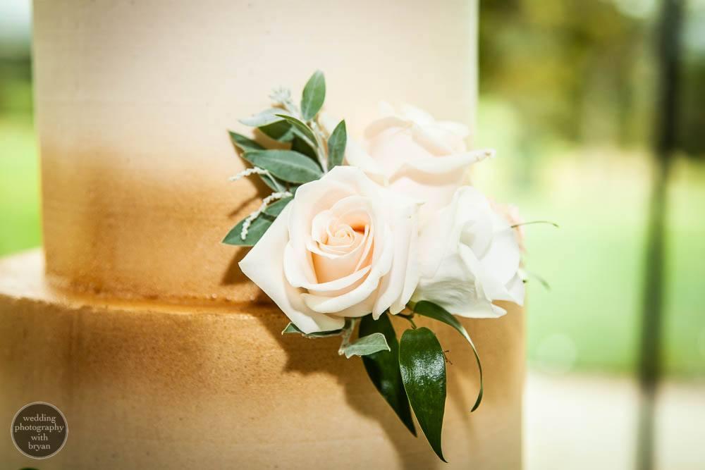 tewkesbury park wedding 137