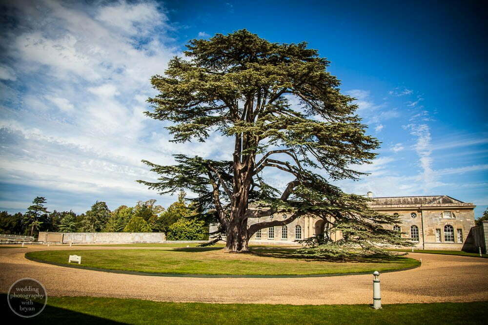 woburn abbey wedding 30